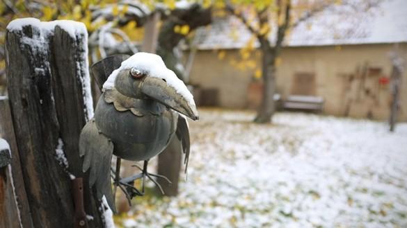 Winter im Burgenland-01