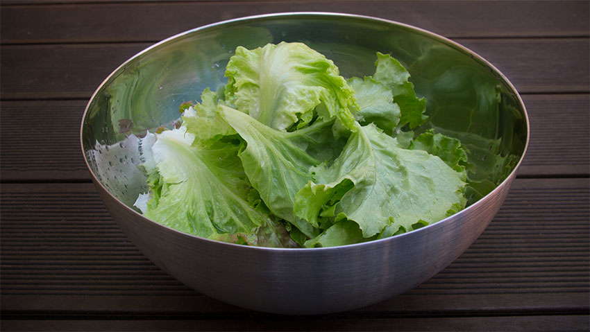 Grazer Häupl-Salat, Ernte im Mai