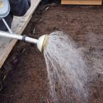 Hochbeet: nach dem aussäen gießen