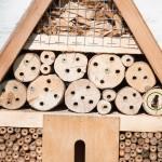Bienenhotel im März-02