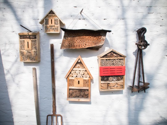 Bienenhotel Anfang März: gut besucht!