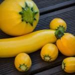 Gelbe Zucchini, Gemüse 2014
