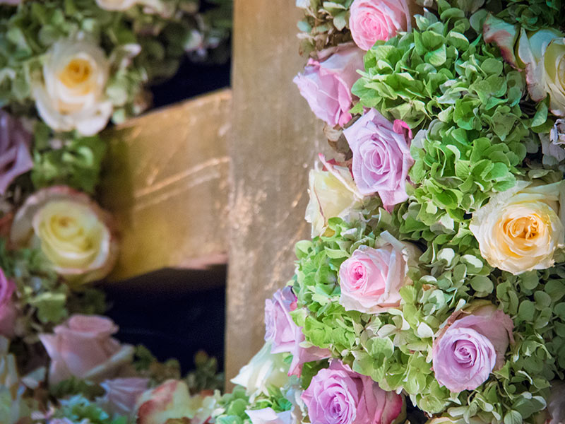 Internationale-Gartenbaumesse-Tulln-2014-Rosene