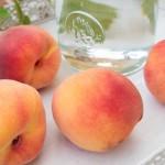 Die Pfirsiche in Burgenland sind reif