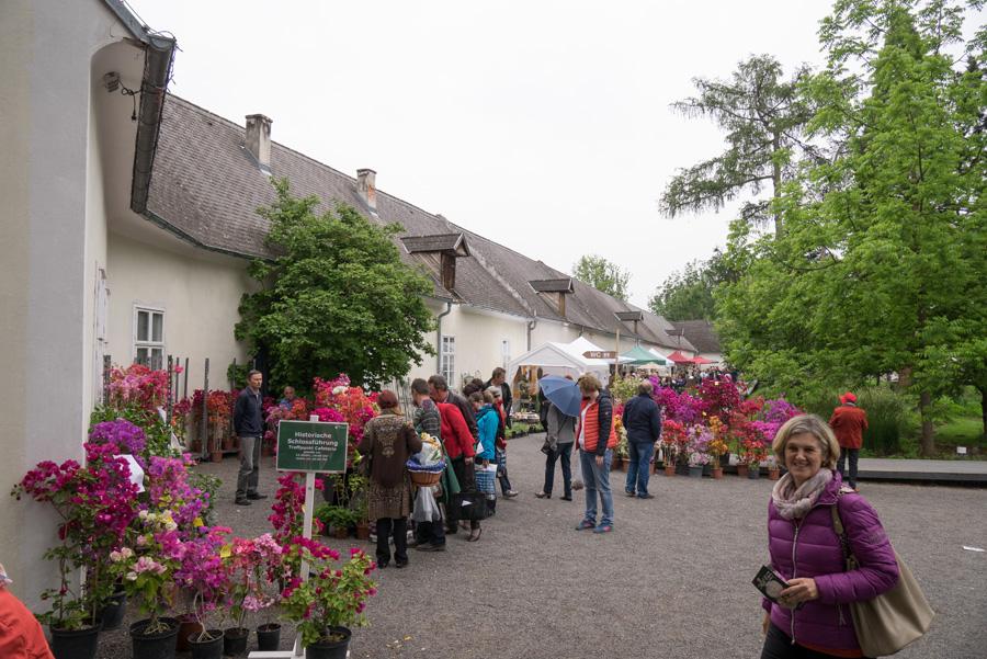 Gartenlust im Schloss Lackenbach