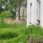 Gartenlust-Lackenbach-impressionen