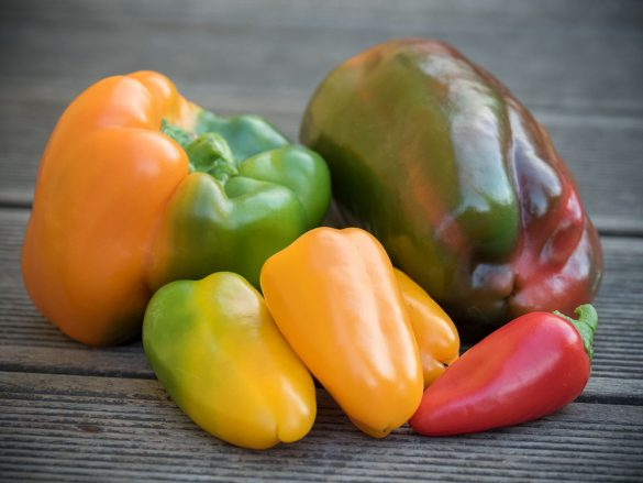 Paprika: Multicolore!