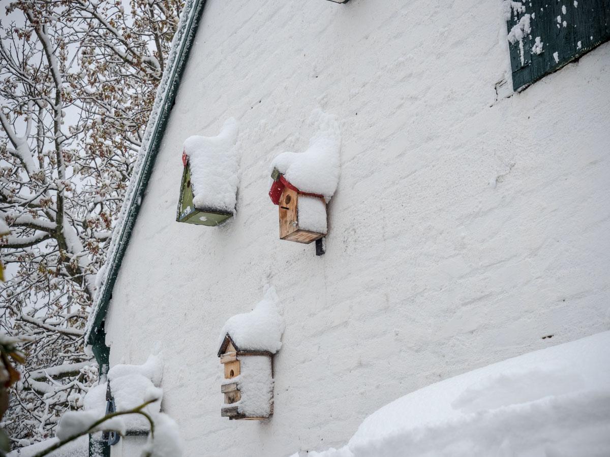 Wintereinbruch-2017-03