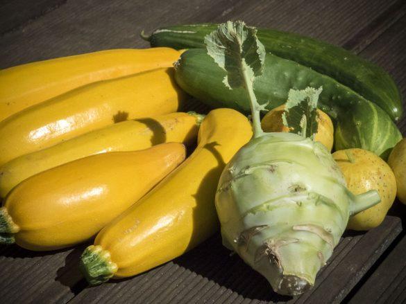Gemüseernte im Gartenjahr