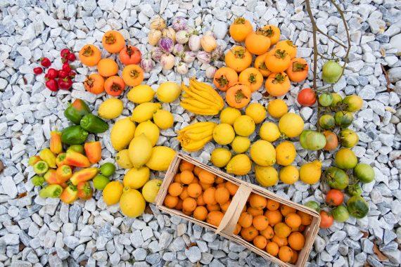 Die letzte Ernte im Gartenjahr